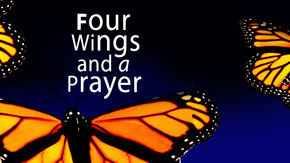 Four Wings and a Prayer