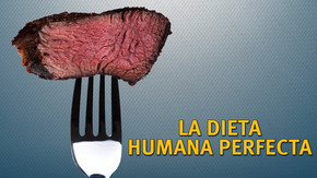 La dieta humana perfecta